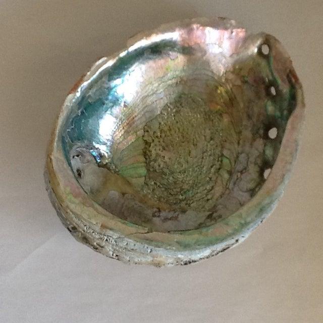 Vintage Abalone Shell Bowl - Image 6 of 8