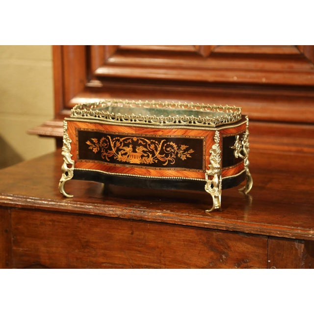 19th Century French Napoleon III Rosewood Planter With Marquetry & Bronze Decor For Sale - Image 10 of 10