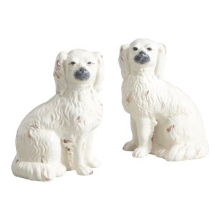 Comfort Dogs - A Pair For Sale