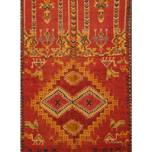 Taznakht rugs are handmade by the tribes of the Ait Ouaouzguite region in Southern Morocco, close to the Sahara Desert....