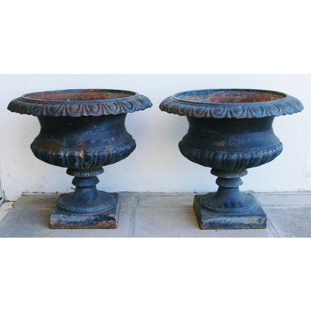 Early 19th-C. Cast Iron Urn Planters - Pair - Image 2 of 11