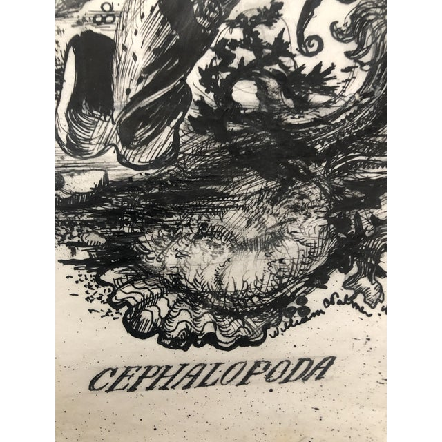 """Illustration """"Cephalopoda"""" Octopus Drawing by William Palmer, 1940 For Sale - Image 3 of 5"""