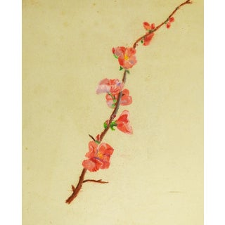 1940s Chinoiserie Pastel Drawing of Cherry Blossoms For Sale
