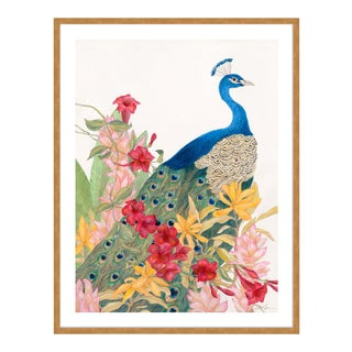Peacock Paradise by Allison Cosmos in Gold Framed Paper, Medium Art Print For Sale