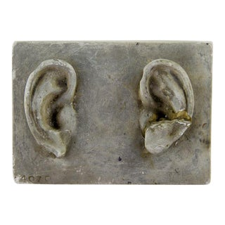 Antique Handmade Plaster Artist Ears by Caproni Brothers