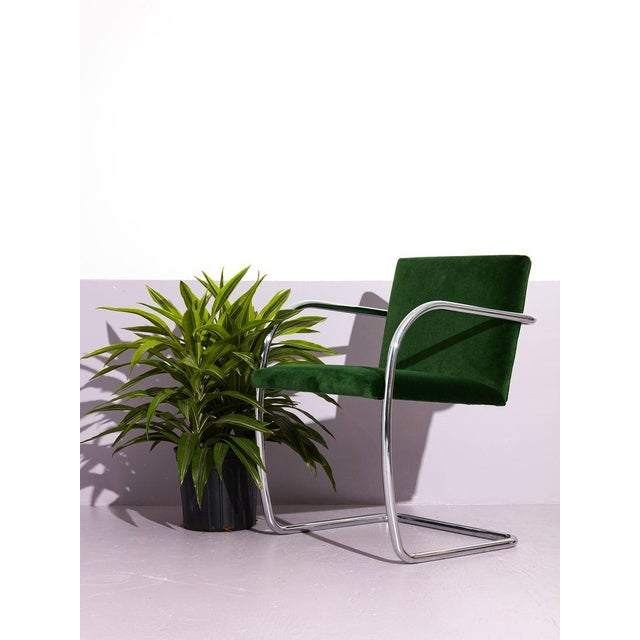 Ludwig Mies van der Rohe Ludwig Mies Van Der Rohe Tube Chrome Cantilever Side Chair For Sale - Image 4 of 7