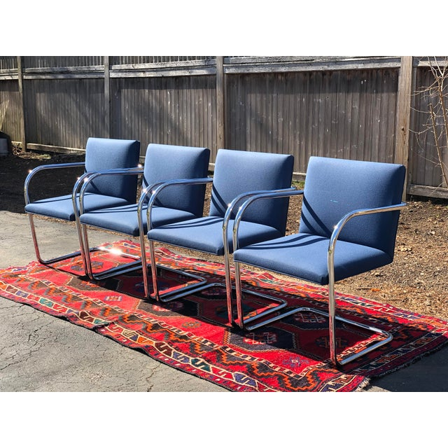 Vintage Mid Century Knoll Studio Brno Chairs By Mies Van