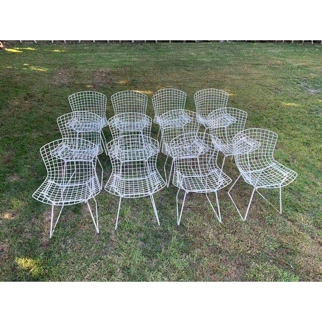 Original Bertoia Sidechairs - would consider selling in 2 sets of 6. We can powder coat these in any color you desire to...