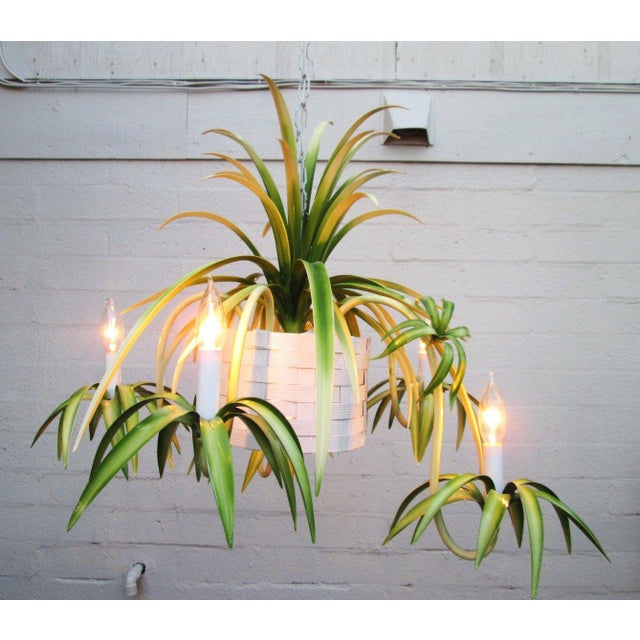 Italian Spider Plant Chandelier - Image 3 of 9