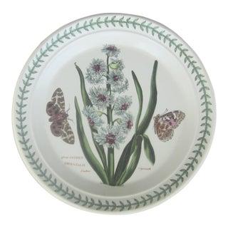 """Vintage English Portmeirion """"The Botanic Garden"""" Plate"""