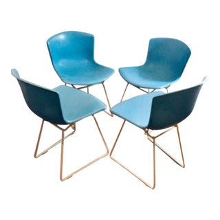 Knoll Harry Bertoia Fiberglass Dining Chairs - Set of 4 For Sale