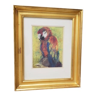 """""""Scarlet Macaw"""" Original Pastel Painting For Sale"""