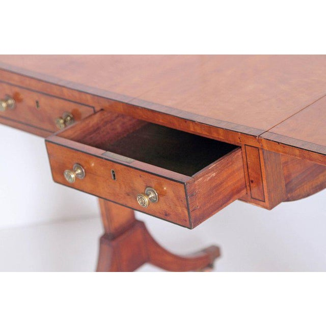 English Regency Satinwood Sofa Table For Sale - Image 9 of 13