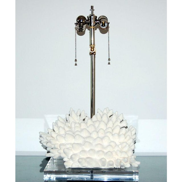 Sculptural WHITE Finger Coral imported from Egypt mounted on a thick rectangular Lucite base paired with Swank's own...