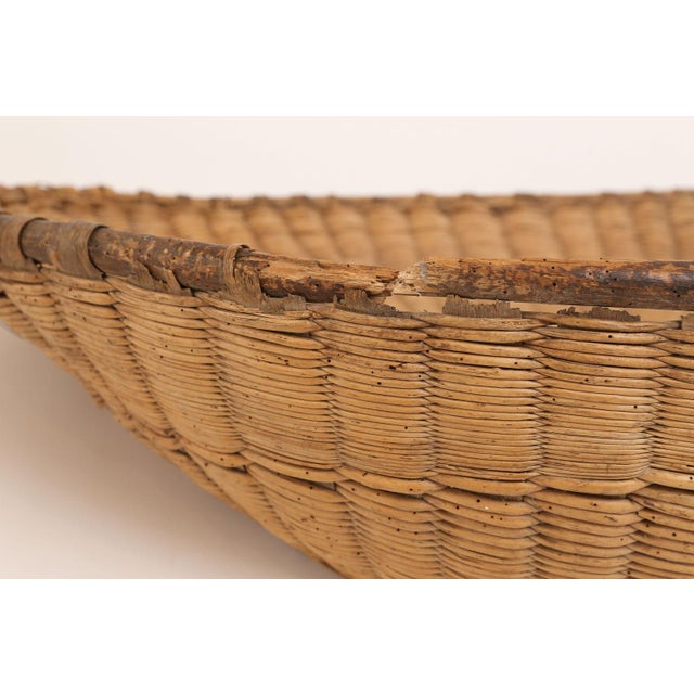 Antique French Winnowing Basket For Sale In Houston - Image 6 of 8