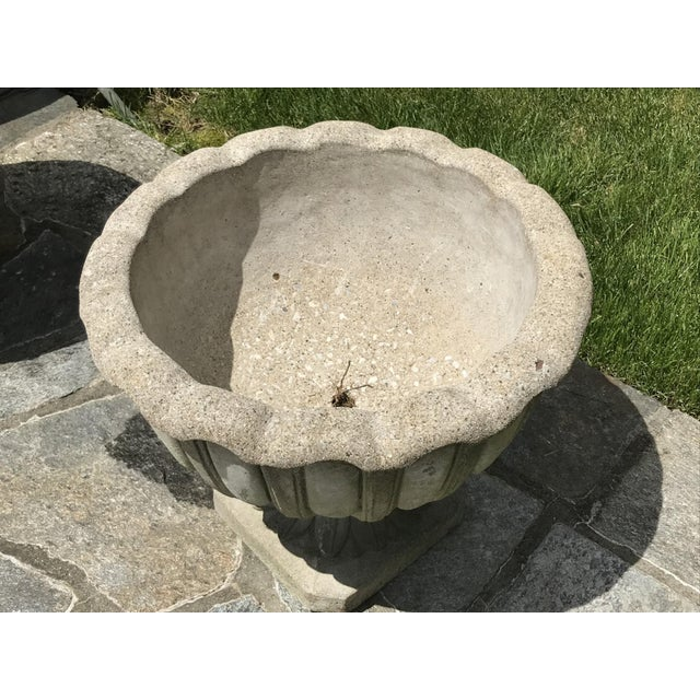 Early 20th Century Antique French Chambord Patinated Stone Lotus Garden Planter Jardiniere For Sale - Image 9 of 12