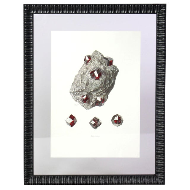 Ivory Antique French Gemstone Mineralogy Study Lithographs Prints - Set of 10 For Sale - Image 8 of 13