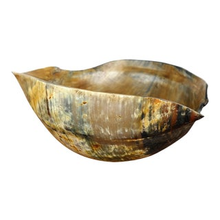 Vintage Formed Buffalo Horn Bowl For Sale
