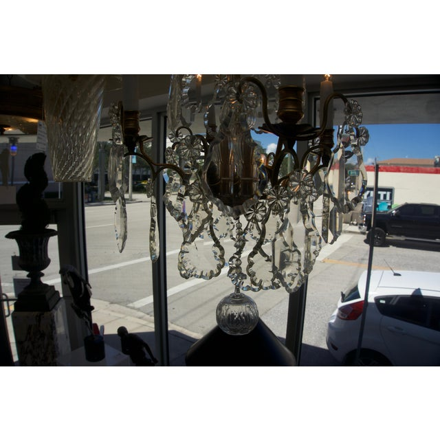 Louis XV Bronze & Hand-Cut Crystal Chandelier From France Circa 1850 For Sale In West Palm - Image 6 of 9