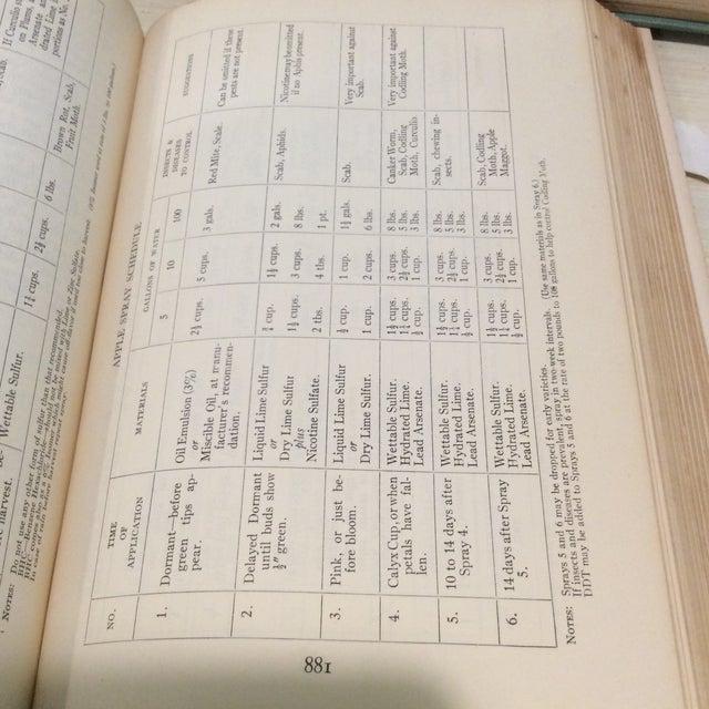 Vintage Green Book Stack - Set of 4 - Image 11 of 11
