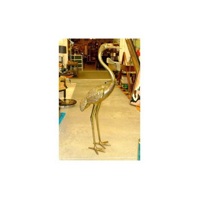 Well cast brass heron (or crane) with nice detail and features. Well balanced on his bird feet. Vintage patina. Hollywood...