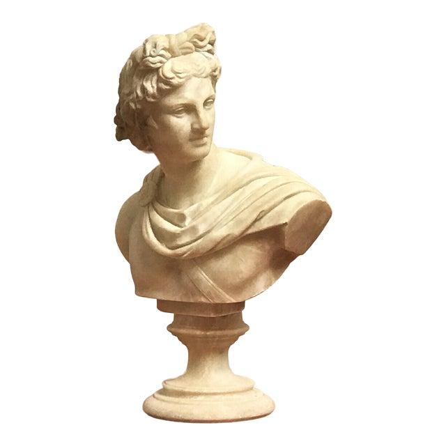 19th Century Italian Grand Tour Souvenir Bust of the Apollo Belvedere For Sale