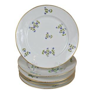 Old Paris Antique Cornflower Sprig Plates - Set of 6