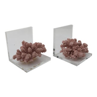 Lucite & Mauve Reef Bookends - a Pair