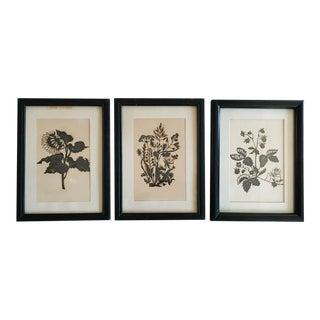 1920's Botanical Silhouettes - Set of 3