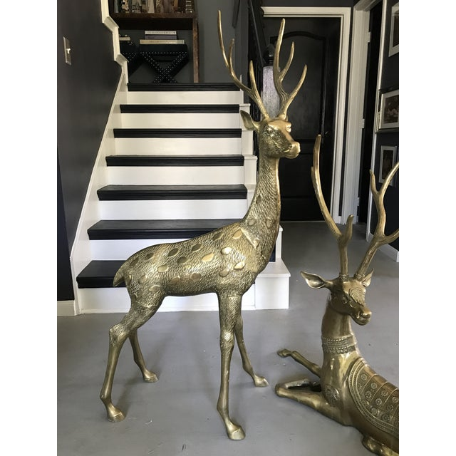 Life-Sized Brass Deer Statues - A Pair - Image 3 of 11