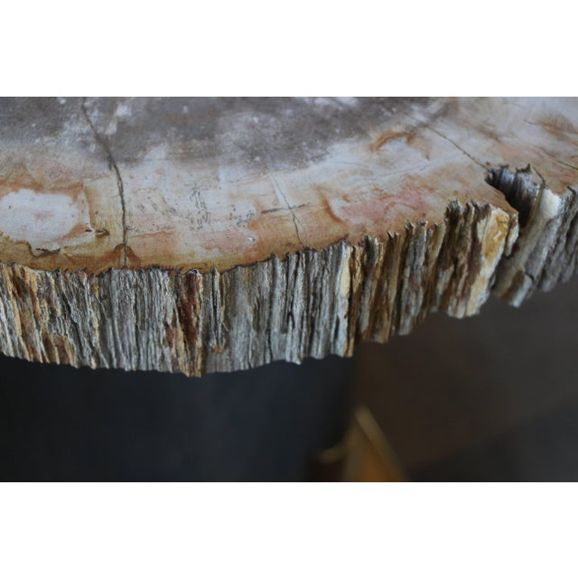 Petrified Wood Table With Brass and Chrome Base For Sale - Image 10 of 13