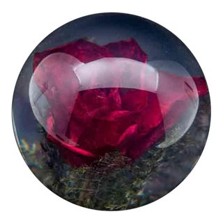 Natural Red Rose Paperweight For Sale