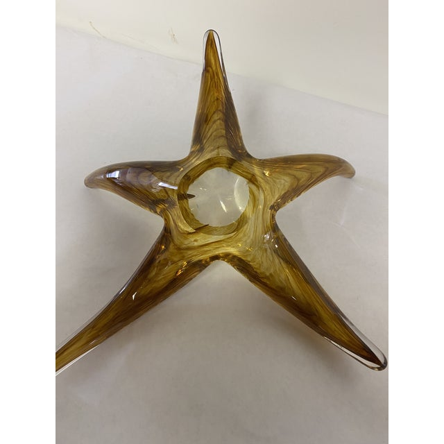 Sea Star Art Glass For Sale In Washington DC - Image 6 of 7