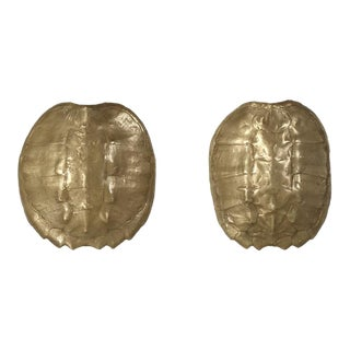 1970s Bronzed Turtle Shell Sconces - a Pair For Sale