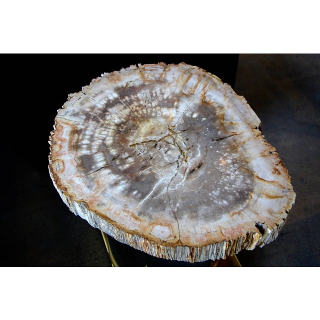 Petrified Wood Table With Brass and Chrome Base For Sale In Palm Springs - Image 6 of 13