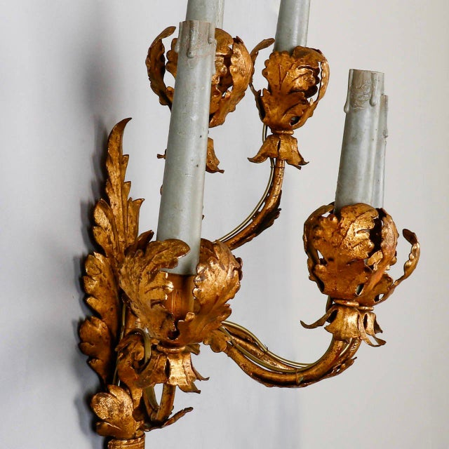 French Pair of Tall Five-Light Gilt Metal Leaf Form Sconces For Sale - Image 3 of 9