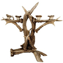Image of Black Forest Candle Holders