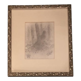 Original Classical Pencil Drawing of Bird in Woods For Sale