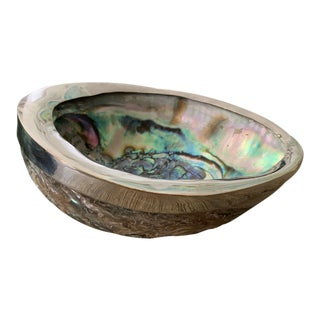 Silver Plate Banded Natural Abalone Shell Footed Bowl For Sale