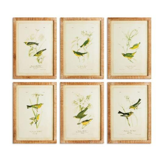 "Kenneth Ludwig Chicago Contemporary ""The Green Birds Study"" Prints by Kenneth Ludwig Chicago, Framed - Set of 6 For Sale - Image 4 of 4"
