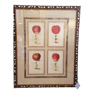 Apple Framed Agriculture Pages For Sale