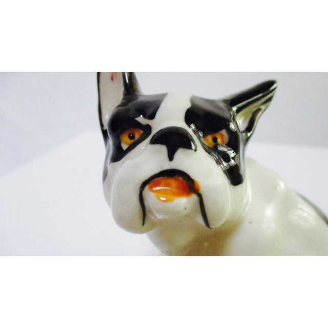 Vintage Ceramic French Bulldog - Image 6 of 7