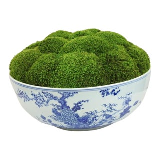 Blue & White Asian Ceramic Bowl With Preserved Moss