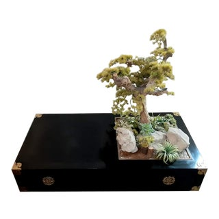 Mid Century Bonsai Tree Coffee Table Black Lacquer For Sale