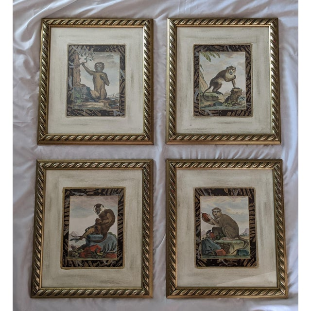 Late 20th Century Hand-Colored Engravings of Monkeys After G. Buffon, Framed - Set of 4 For Sale - Image 13 of 13