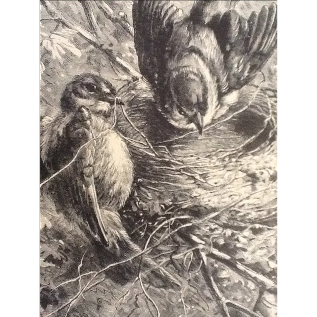 Antique Giacomelli Book Plate Engraving - Image 2 of 2