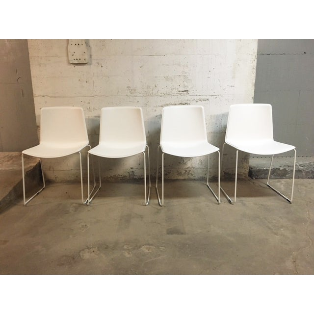 Pedrali #897 Tweet Chairs - Set of 4 - Image 2 of 7