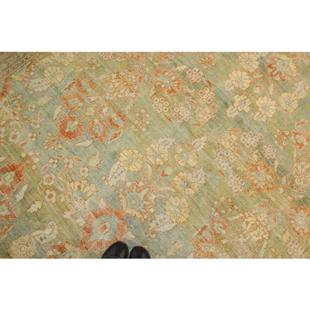 Textile Pale Green Terracotta Antique Rug, 9'1'' X 12'7'' For Sale - Image 7 of 13