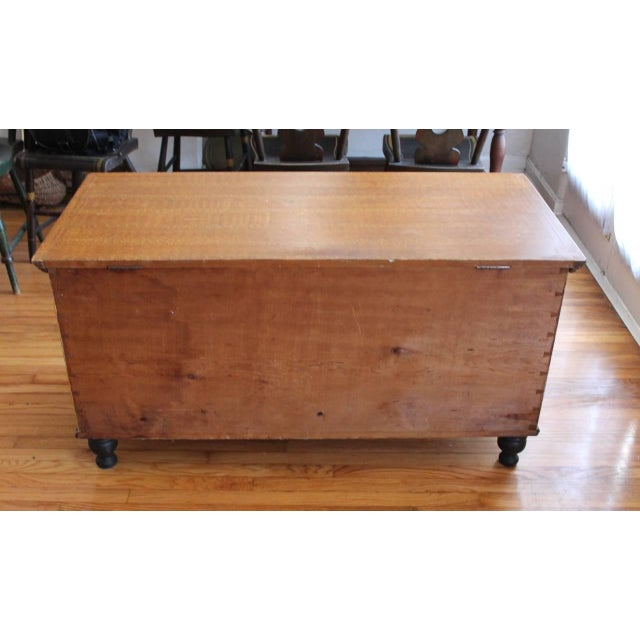 19th Century Original Sponge Paint Decorated Blanket Chest from Pennsylvania - Image 4 of 8