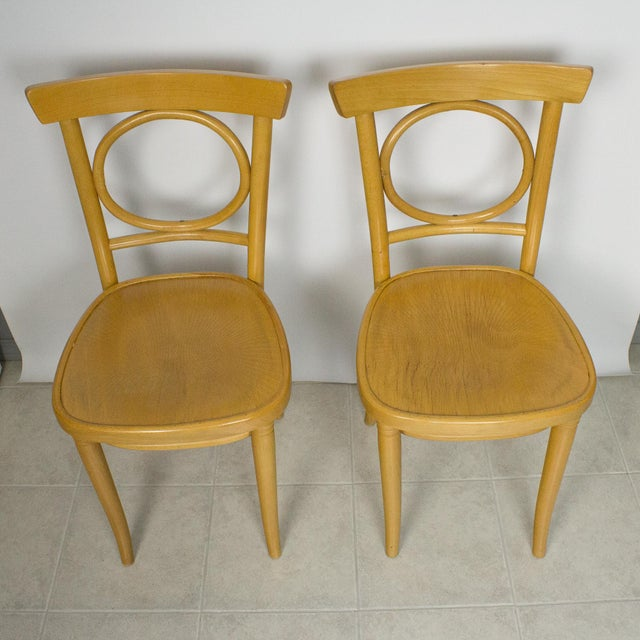 1950s Radomsko Thonet Bentwood Cafe Chairs - Set of 4 For Sale - Image 5 of 10